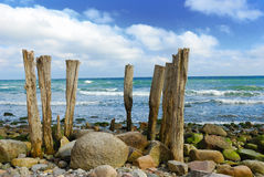 Wooden poles Stock Image