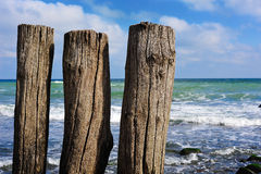 Free Wooden Poles Royalty Free Stock Images - 6773929