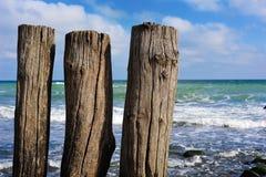 Wooden poles. Three wooden poles at the coast of Kap Arkona (Ruegen, Germany Royalty Free Stock Images