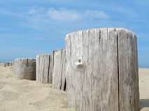 Wooden poles on the beach Royalty Free Stock Photography