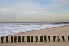 Wooden poles on a beach Royalty Free Stock Photography