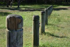 Wooden poles in park Stock Photography