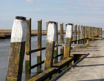 Wooden poles Royalty Free Stock Photo