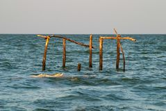 Wooden poles in the sea at sunset, stock photography