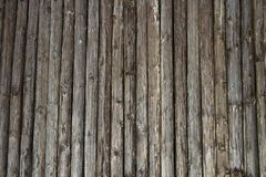 Wooden poles thick wall with natural background Royalty Free Stock Image