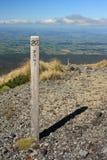 Wooden poles on track to Mount Taranaki Royalty Free Stock Photo