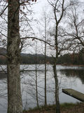 Wooden pontoon and lake in the Vosges Stock Photos