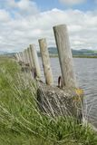 Wooden post barrier at edge of a lake royalty free stock photos