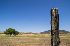 The wooden post. Royalty Free Stock Image