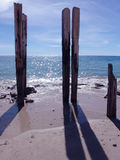 Wooden Posts. At Beach stock photography