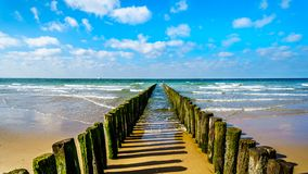 Wooden Posts of a beach erosion protection system along the beach at the town of Vlissingen in Zeeland Province. In the Netherlands royalty free stock photography