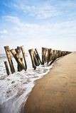 Wooden posts on the beach Royalty Free Stock Photography