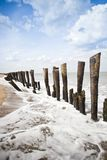 Wooden posts on the beach Royalty Free Stock Photo