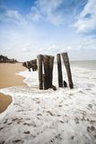 Wooden posts on the beach Royalty Free Stock Image