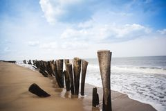 Wooden posts on the beach Stock Photos