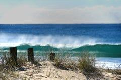 Wooden posts on beach stock photos