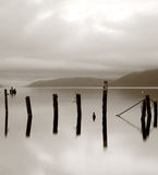 Wooden posts in lake - Loch Ness. Aged and weathered remains of a derelict jetty standing in the waters of Loch Ness, Scotland Royalty Free Stock Images