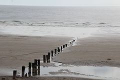Wooden posts leading into the sea Royalty Free Stock Photo