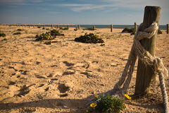 Wooden posts poles with rope in sunset on a sandy beach with atlantic ocean. Algarve, portugal Stock Photo