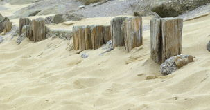 Wooden posts in the sand Royalty Free Stock Image
