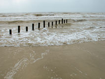 Wooden posts in sea Royalty Free Stock Photos