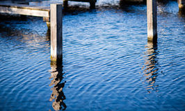 Wooden posts in water Stock Photography