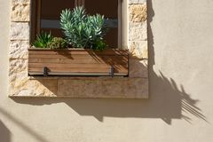 A wooden pot with green plants on a massive stone window sill is a beige wall, a slanting shadow falls from the pot. Wooden pot with green plants on a massive Stock Images