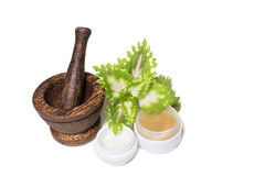 Wooden pounder with bottles of organic oils and. Cream Stock Image
