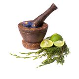 Wooden pounder with flowers and lime isolated. Wooden pounder with lime and purple flowers Stock Photos