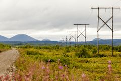 Wooden power lines in the Kamchatka mountains. Russia royalty free stock photo