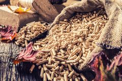 Wooden pressed pellets and briquettes from biomass. Wooden pressed pellets and briquettes from biomass with autumn leaves royalty free stock photo