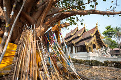 Wooden props support an old bodhi tree in the grounds of Wat Jed Yod, Chiang Mai, Thailand Stock Images