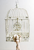Wooden puppet entering birdcage stock images