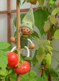 Wooden Puppet and tomatoes. Stock Image