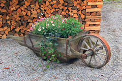 Wooden pushcart, planted with summer flowers Royalty Free Stock Photo