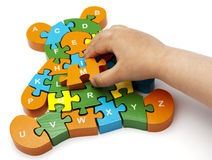 Wooden puzzle  bear. Solving bear puzzle letters with child's hand copy Stock Photos