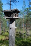 Wooden rack for wild birds in Finnish forest Royalty Free Stock Photo