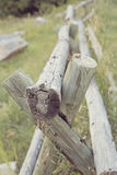 Wooden rail fence Royalty Free Stock Photos