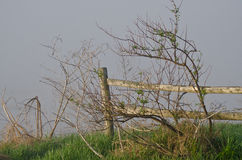 Wooden Rail Fence on a Foggy Spring Morning Stock Images