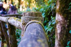 Wooden railings on wooden bridge. Railings on a wooden bridge in the green forest , blurred background and small bokeh Stock Image