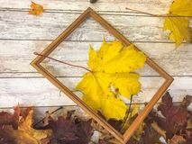 Wooden rectangular picture frame and yellow autumn leaves, maple on the background of wooden boards. The background. Texture. Wooden rectangular picture frame stock image