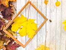 Wooden rectangular picture frame and yellow autumn leaves, maple on the background of wooden boards. The background. Texture. Wooden rectangular picture frame stock images