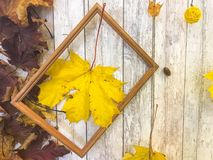 Wooden rectangular picture frame and yellow autumn leaves, maple on the background of wooden boards. The background. Texture. Wooden rectangular picture frame royalty free stock photos