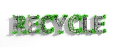 Wooden Recycle word with green grass. Growth stock illustration