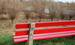 A wooden red bench. A red bench and willow trees in the background Stock Photos