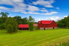 Wooden red cottage houses in Sweden. Wooden red cottage houses in scenery of Sweden Royalty Free Stock Images