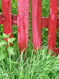 Wooden red gate on grass Stock Photography