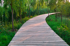 Wooden road Royalty Free Stock Image