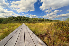 Wooden road through a bog Stock Photo