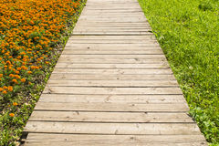 Wooden road through grass and flowers Royalty Free Stock Photography